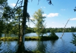 Славковский лес, Чехия
