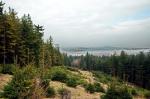 Slavkovský les u Krásna