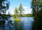 Славковский лес