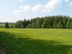 заповедник Славковский лес в Марианских Лазне