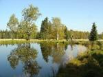 заповедник Славковский лес, Чехия