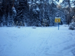 Лесопарк Конаковский зимой