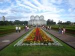 Ботанический сад Куритибы