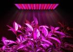 светодиодное освещение для растений