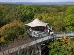 Thueringen Nationalpark Hainich