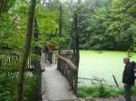 Национальный парк Хайних, Германия