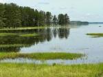 озеро Пено, Тверская область, Россия