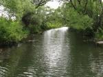 река Осётр, Россия