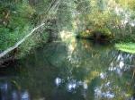 река Осётр в России