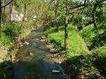 Börzsöny Stream in Nagybörzsöny
