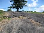 озеро Пич-Лейк, остров Тринидад