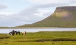Blandshfi, Islandia