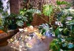 прудик с черепахами в саду Миндо