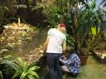 прудик в саду Миндо