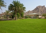 Green Mubazzarah Park in UAE