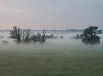 Нижняя Долина Одера в тумане
