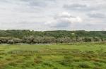 Национальный парк Нижняя Долина Одера, Германия
