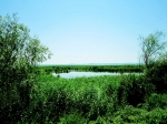 озеро Кугурлуй, Украина