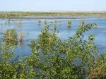 озеро Кугурлуй, Одесская область