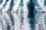 ледниковая лагуна Ёкюльсаурлоун, Исландия