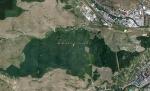 лес Хойя-Бачу с высоты