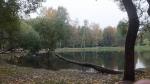парк Серебряный пруд