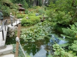 Japanese Gardens, Powerscourt, Ireland