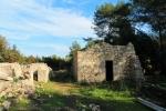 развалины башни Регины