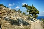 Akamas Peninsula, Aprhodite Nature Trail, Cyprus