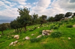 Национальный парк Акамас, Пафос