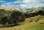 Нацпарк Акамас, Пафос, Кипр