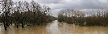 половодье на реке Латорица