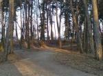 Лычаковский парк во Львове