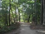 Лычаковский парк