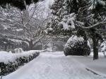 Алушта зимой