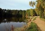 Карагайский бор, Челябинская область, Россия