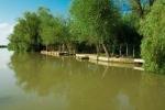 река Дунай в Вилково