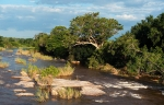 Kruger National Park, SAR