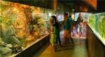 Одесский океанариум