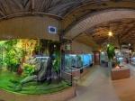 океанариум Немо в Одессе
