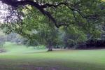 парк Лизелунд
