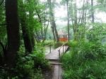 на острове, Шелеховское озеро