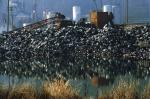 мусорные свалки в Китае