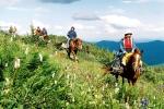 конный туризм в Хакасии