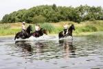 конный туризм в Подмосковье