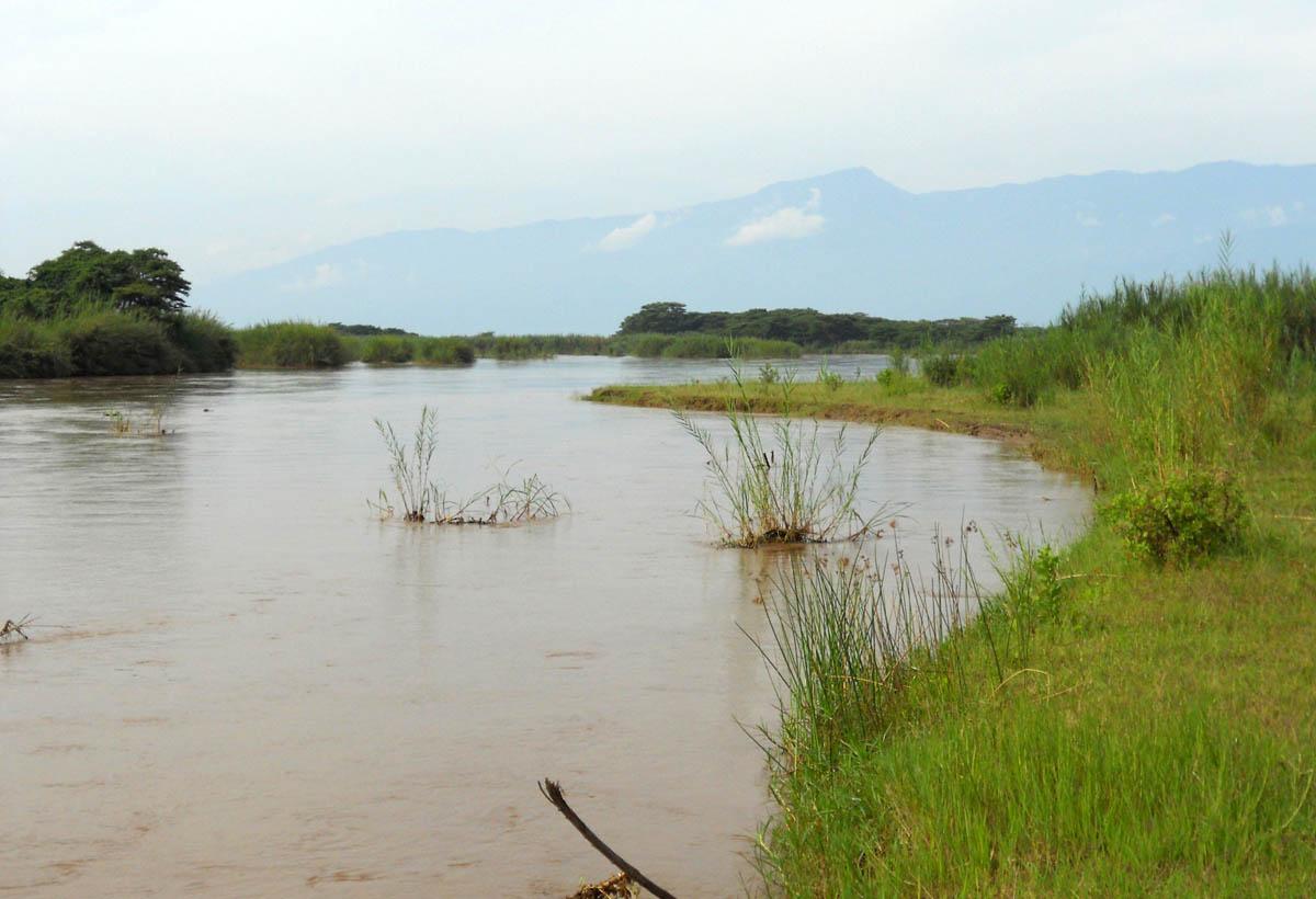 Национальный парк Русизи в Бурунди и нильский крокодил-людоед Густав
