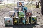 экспозиция Кубики в Белгородском зоопарке