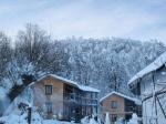 гора Цецино, Черновцы