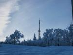 гора Цецино в Черновцах