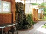 гостевой дом Кубаночка в Анапе